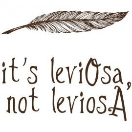 LeviOsa not Leviosaa
