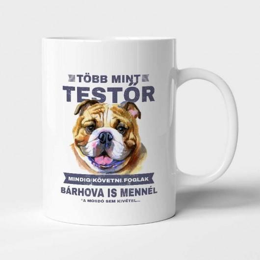 Több mint testőr Angol Bulldog