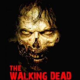 TWD Zombie Női póló