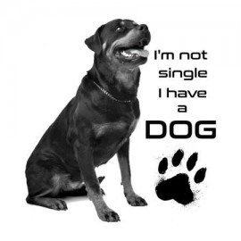 I'm not single Rotweiler Férfi póló
