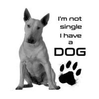 I'm not single Bull Terrier Férfi póló