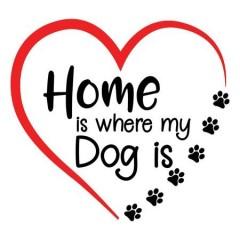 Dog Home Női Póló